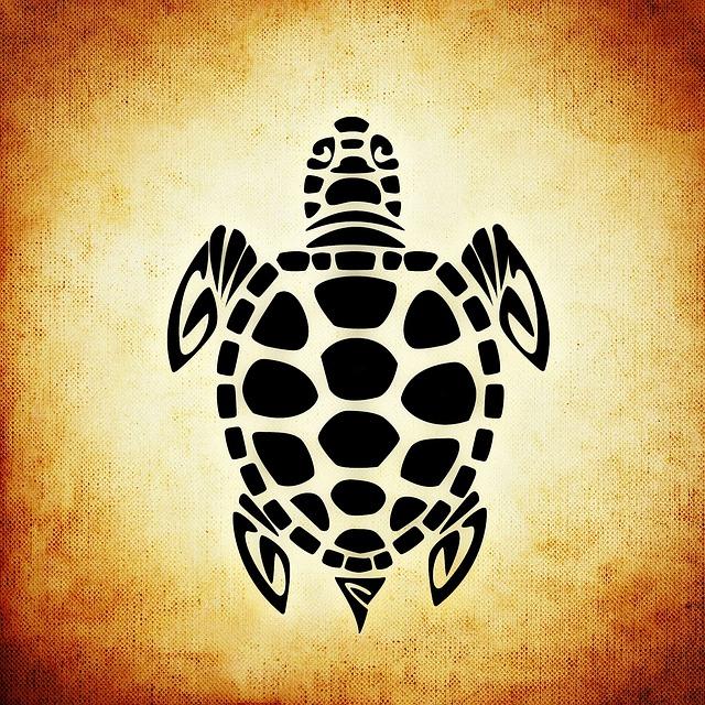 Langsamkeit durch eine Schildkröte ausgedrückt